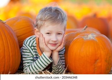 cute little boy at pumpkin patch, autumn time