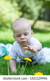 cute little boy relaxing in park