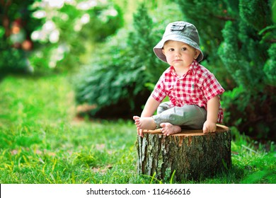 cute little boy sitting on a tree stump