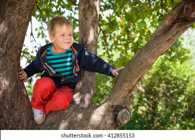 Cute little boy sitting on the apple tree branch. Child climbing on a big tree. Outdoors. Sunny day. Active boy playing in the garden.