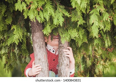 Cute little boy at summer day playing and smiling, hiding behind green tree
