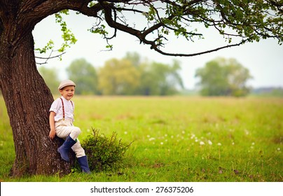 cute little boy under the big blooming pear tree, countryside
