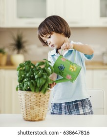 Cute little boy watering a plant in his house.