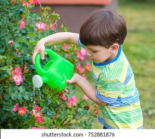 Cute little boy watering plants and roses with watering can in the garden. Child dressed in light summer closes and colourful t-shirt, smiling and having fun. Activities with children outdoors.