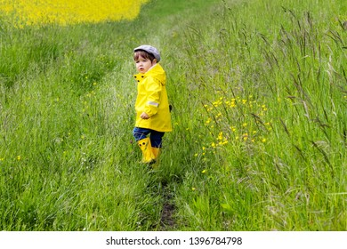 Cute little boy in yellow raincoat, rubber boots and cap walking in meadow with green grass looking back with serious attentive face expression. Childhood lifestyle