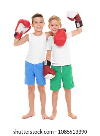 Cute little boys in boxing gloves on white background