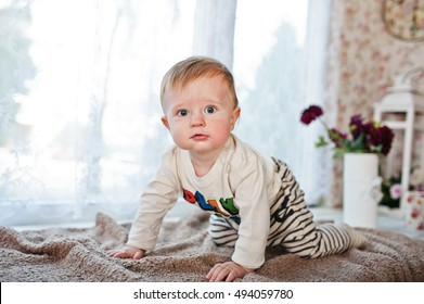 Cute little caucasian baby boy creeps on coverlet and looking at camera