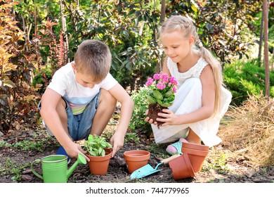 Cute little children setting plants in garden
