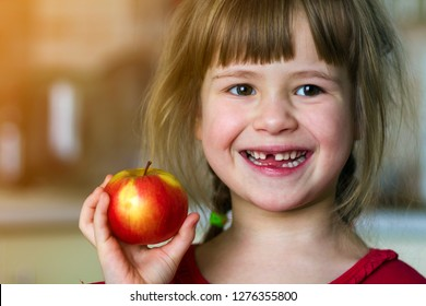 A cute little curly toothless girl smiles and holds a red apple. Portrait of a happy baby eating a red apple. The child loses milk teeth. Healthy food nutrition.