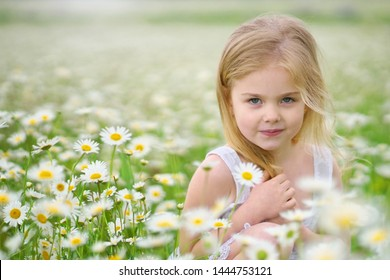 Cute little girl in big camomile meadow. Portrait composition.