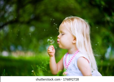 Cute little girl blowing the fluff off a dandelion head outdoors in the park