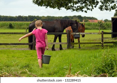 A cute little girl with bucket of water feeding horses in a pasture
