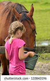 A cute little girl with bucket of water feeding a horse