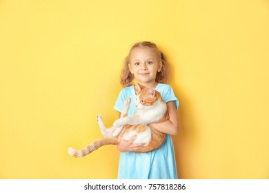 Cute little girl with cat on color background