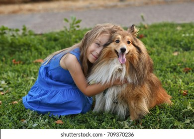 Cute little girl with dog Sheltie breed. Best friends forever. Dog devotion. A girl and pet in the park. She hugs the doggy