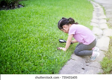 Cute little girl exploring a life of small insect on green grass field with her magnifying glass