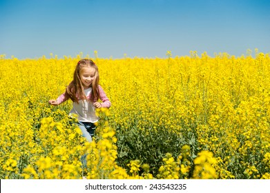 cute little girl in a field of  flowers