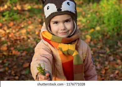 Cute little girl in funny hat walking and gathering autumn flowers in the beautiful autumn forest, autumn outdoor, warm family weekend concept