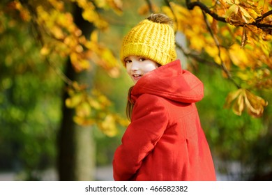 Cute little girl having fun on beautiful autumn day outdoors