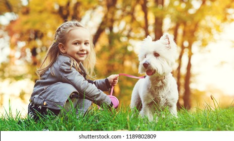 Cute little girl with her dog in autumn park. Lovely child with dog walking in fallen leaves. Stylish little girl enjoying colourful autumn park with her best friend dog. Happy childhood. Autumn