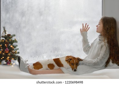 Cute little girl and her puppy jack russell sitting by the window and looking on first falling snow on early Christmas morning.