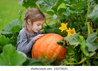 Cute little girl hugging a pumpkin in a pumpkin patch