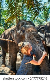 Cute little girl hugging the trunk of an Asian elephant at an animal sanctuary in Thailand