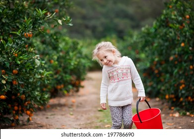 Cute little girl looking happy on a mandarin farm ready to pick some mandarins