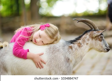 Cute little girl petting and feeding a goat at petting zoo. Child playing with a farm animal on sunny summer day. Kids interacting with animals.