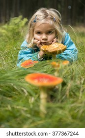 Cute little girl picking mushrooms in summer forest, looks at non edible poisonous mushrooms toadstools in forest, kids outdoor activities