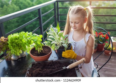 Cute Little girl planting and taking care of flowers on a summer terrace at home