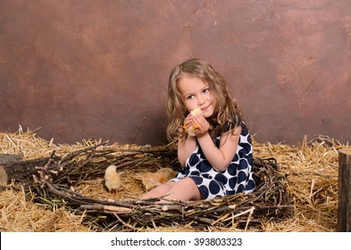 cute little girl playing with alive chickens in nest of twigs in farmers interior