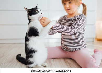 Cute little girl playing with cat at home