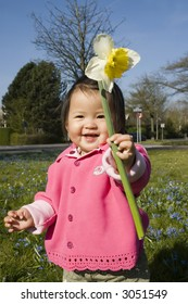 cute little girl playing with a daffodil (narcissus) flower