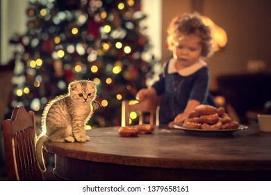 Cute little girl is playing with little kitten, eating donuts and drinking milk in front of big new year tree at home in Russia. Image with selective focus and toning.