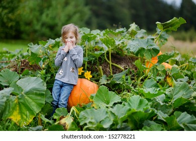Cute little girl sitting on a pumpkin in a pumpkin patch