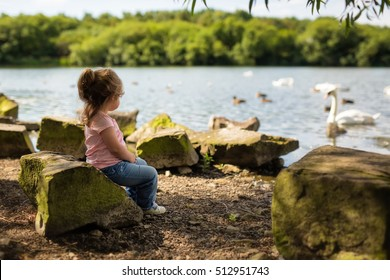 Cute little girl sitting on a rock watching Swans go by on an English lake