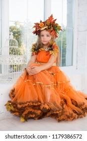 Cute little girl wearing autumn costume posing near the window