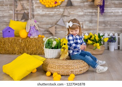 Cute little girl wearing rustic jeans playing hide and seek with a chicken sitting at a haystack. The concept of children with animals. Studio.