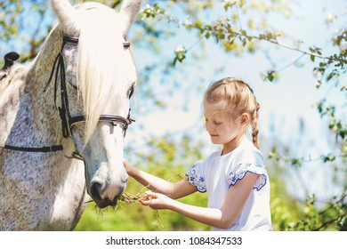 Cute little girl whith white horse in blooming apple orchard