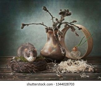 Cute little gray rat in the nest eating quail egg. Chinese New Year symbol