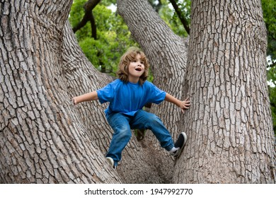 Cute little kid boy enjoying climbing on tree on summer day. Cute child learning to climb, having fun in forest or park on warm sunny day. Happy time in nature - Shutterstock ID 1947992770