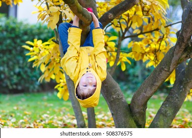 Cute little kid boy enjoying climbing on tree on autumn day. Preschool child in yellow rain coat and red rubber boots learning to climb, having fun in garden or park on warm sunny day.
