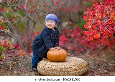 Cute little kid having enjoying countryside Outdoor