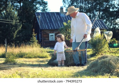 cute little kids on nature in summer on the site in a country house