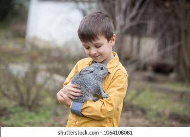 Cute little preschool boy, playing with rabbits, pets, outdoors in garden