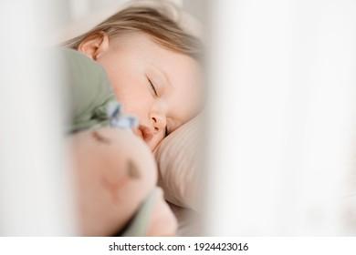 cute little sleeping boy, face close up
