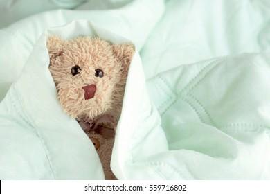Cute little teddy bear sleeping in the bed on a green blanket, Doll is relaxing