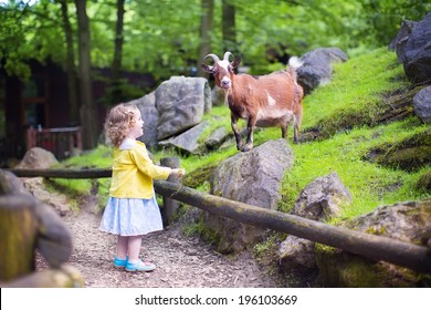 Cute little toddler girl with curly hear wearing a colorful dress feeding a goat playing and having fun watching animals on a day trip to a modern city zoo on a hot summer day