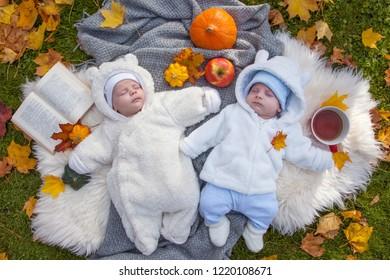 cute little twins relaxing in autumn park